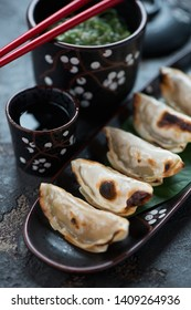 Close-up of japanese pan fried gyoza, selective focus, vertical shot
