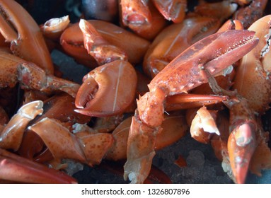 closeup jonah crab claws