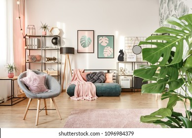 Close-up of leaves, grey armchair with a star pillow and green mattress in a feminine bedroom interior