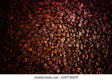 closeup of lots of whole coffee beans
