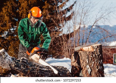 Close-up of lumberjack worker with chainsaw in his hands saws fallen tree, chips and dust fly upwards, against blue sky. Protective helmet, headphones.