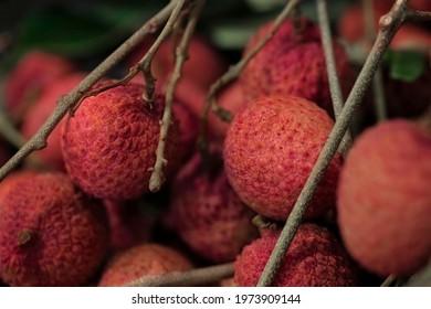 Closeup Lychee fruit (Litchi chinensis Sonn), Thai fruit Linchee  background.