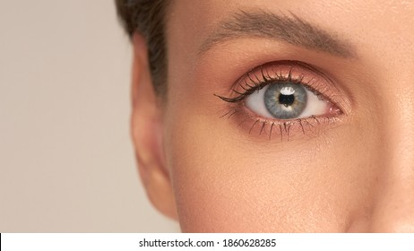 Close-up macro of a beautiful female eye with a perfect eyebrow shape. Clean skin, trendy natural makeup. Good vision