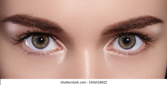 Close-up Macro of Beautiful Female Eyes with Perfect Shape Eyebrows. Clean Skin, Fashion Naturel Make-Up. Good Vision. Staring In Front