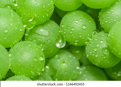 close-up of macro grapes