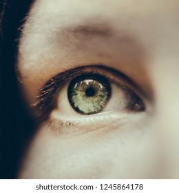 Closeup macro of green  eye