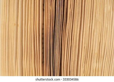 close-up macro old vintage worn mottled edge photographed pages of an open book