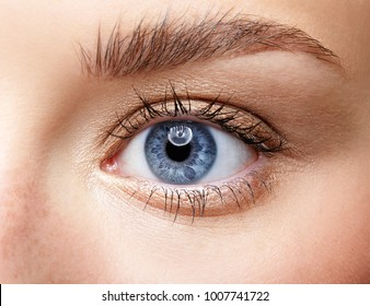 Closeup macro portrait of female face. Human woman blue eye with day beauty makeup and long natural eyelashes. Girl with perfect skin and freckles.