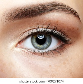 Closeup macro portrait of female face. Human woman eye with day beauty makeup and long natural eyelashes. Girl with perfect skin and freckles.