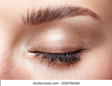 Closeup macro shot of closed human female eye. Woman with natural day face beauty makeup. Girl with perfect skin and freckles.