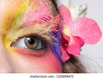 Close-up macro shot of female eye. Woman with bright stylish make-up and false fashion feather eyelashes