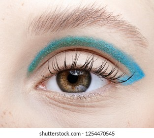 Closeup macro shot of  human female eye. Woman with vogue face beauty makeup. Girl with perfect skin and blue smoky eyes eye shadows