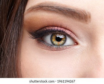 Closeup macro shot of  human female eye. Woman with natural evening vogue face beauty makeup. Girl with perfect skin and  pink  eyes shadows.