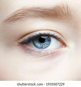 Closeup macro shot of human teenager female eye. Woman with natural face beauty makeup.