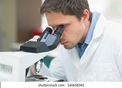 Close-up of a male scientific researcher using microscope in the laboratory
