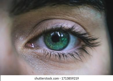 Close-up of a man green eye