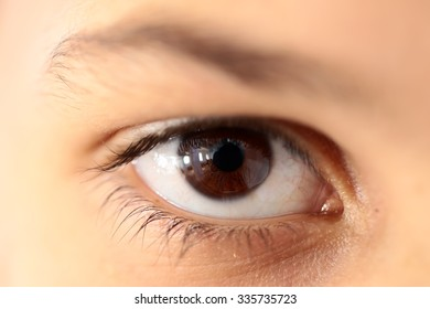 Closeup medical view of one human male or female open eye looking with long lashes and white skin and beautiful color, horizontal picture