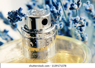 Closeup metallic spray perfume bottle framed with blue lavender herb, yellow aroma extract. Cosmetic product fresh natural scent.