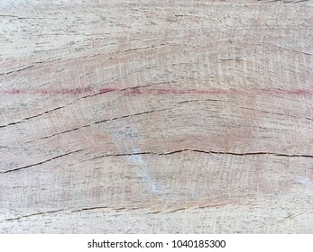 Closeup natural wood background for texture