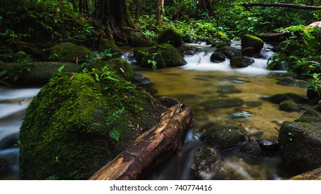Closeup nature view of forest stream waterfall. waterfall mossy rocks. Natural rocks and waterfall plants landscape using as a background or wallpaper.