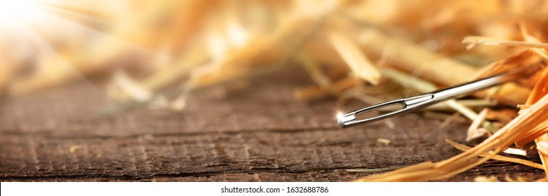 Closeup Of A Needle In A Haystack on Wooden Floor With Sunlight - Search Until You Find Concept