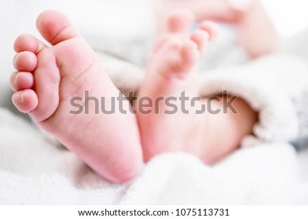 closeup newborn baby feet template baby stock photo edit now