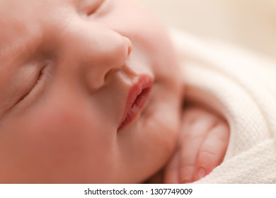 Closeup of Newborn baby girl, 12 days old, studio session.