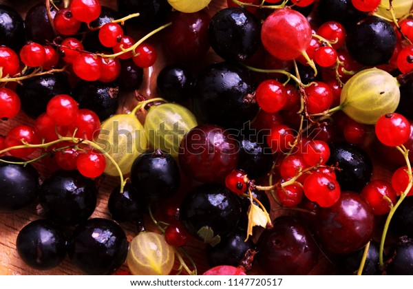 Closeup of northern berries on light wooden desk. Eco food, orchard concept. Black, red currant, gooseberry, cherry