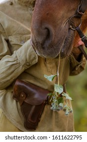Close-up of the nose of a fighting red horse chewing on a burdock. A woman - a cavalryman in a military uniform with a leather holster on his belt holds him by the occasion.