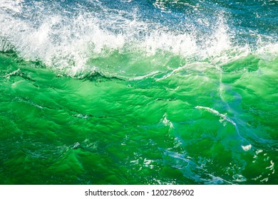A closeup of an ocean wave that is backlit with the afternoon sun, showing a vibrant green color.