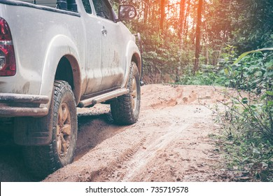Closeup offroad car at the impassable forest road of mud and clay. offroad travel concept.