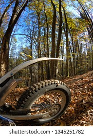 Close-up of offroad motorbike, autumn forest landscape in background. Wide-angle view.
