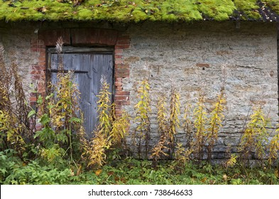 Closeup of old house wall with wooden door and moss on roof at autumn