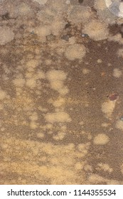Closeup of old sandstone with stains at Watsonville in Queensland, Australia