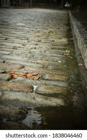 Closeup of old worn brick road with fallen leaves after rain