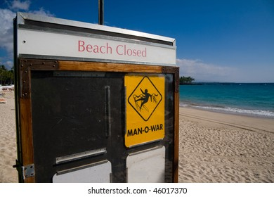 Closeup on a beach closed sign. Dangerous risk of man-o-war stings