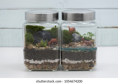 Closeup on closed diptych jar terrarium of miniture landscae forest design with moss and aquarium plants on layers of soils, pebbles and resin water.