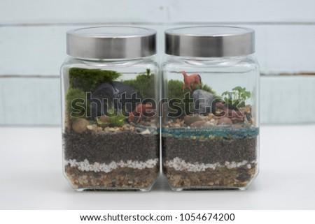 Closeup On Closed Diptych Jar Terrarium Stock Photo Edit Now