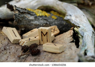 Close-up on the Eyvaz rune which stands among other runes, near dry branches and bark with yellow moss. The concept of mysticism, magic and prediction of the future