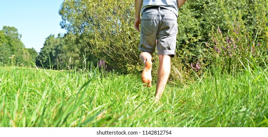 Close-up on the feet - man is walking in the summer through a green meadow