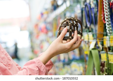 closeup on female hands choosing stylish, trendy, modern muzzled for dogs on the supermarket shopping shelf background