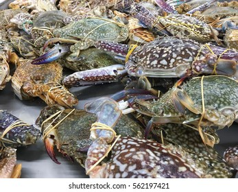 Closeup on fresh raw flower crabs or blue crab available in the wet market.
