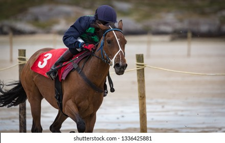 Close-up on galloping race horse and jockey on the beach