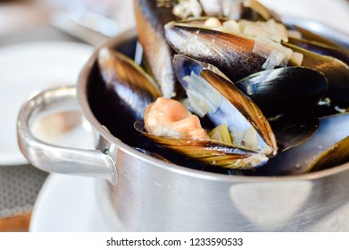 Closeup on Mediterranean mussels exotic food sea shells