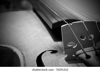 Close-up on Violin detail