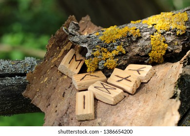 Close-up on wooden runic alphabet that lie on a dry bark from a tree. Near yellow moss. Runic Futhark in the element