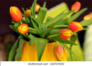 Closeup of orange Tulips with yellow tip petal in a yellow vase with dark background