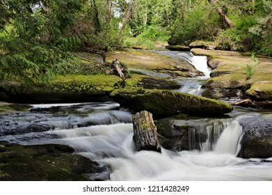 Closeup outdoor capture of cascading Millstone River running through Bowen Park long exposure silky looking water surface boulder edges moss covered rocks piece of driftwood green forest background