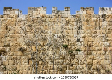 Closeup of the outer wall of the old city of Jerusalem in Israel