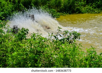 Closeup of paddle-wheels being used to aerate rural pond with green foliage on shoreline. Water is blurry due to motion.